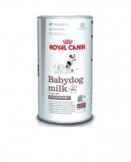 Baby Dog Milk