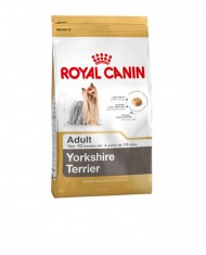 Yorkshire Adult