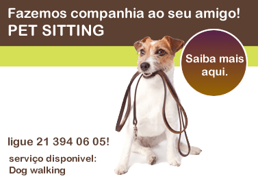 dog-walking-banner