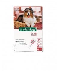 Advantage cães (10-25Kg)