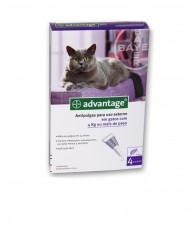 Advantage gatos (4-8kg)