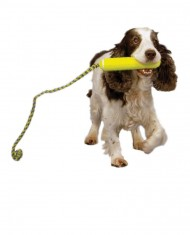 Kong AirDog Fetch Stick