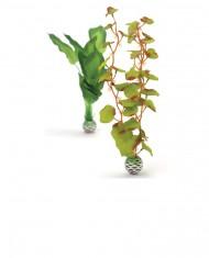biOrb Planta de Seda Verde