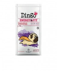 Dingo Energy & Fit