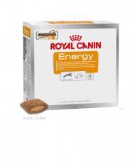 Biscoitos energy (30 x 50 gr)
