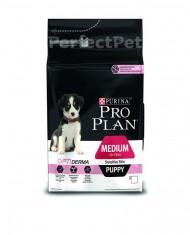 Medium Puppy Sensitive skin