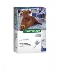Advantage cães (mais de 25Kg) – PROMOÇÃO