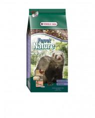Ferret Nature